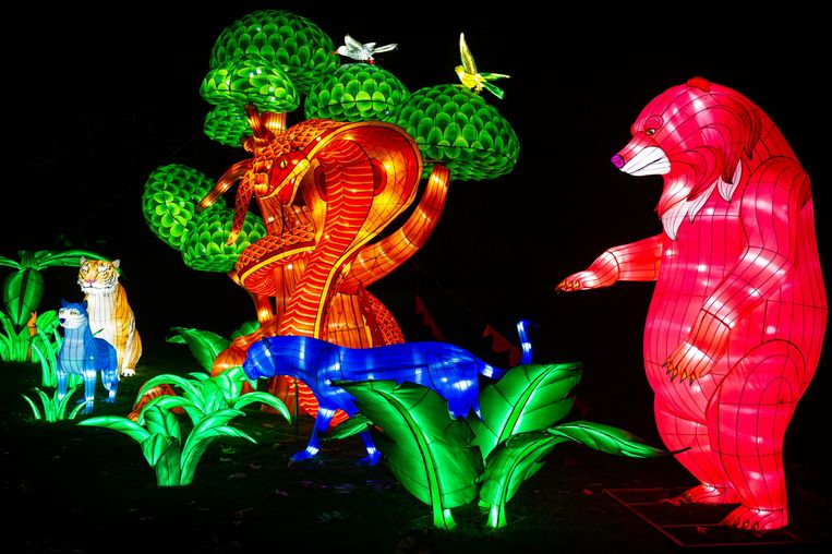 Jungle Book Light Festival