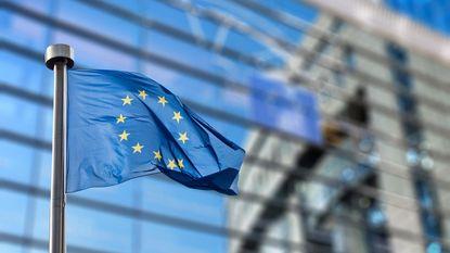Europarlementariërs zien unieke kans om komaf te maken met parlement in Straatsburg