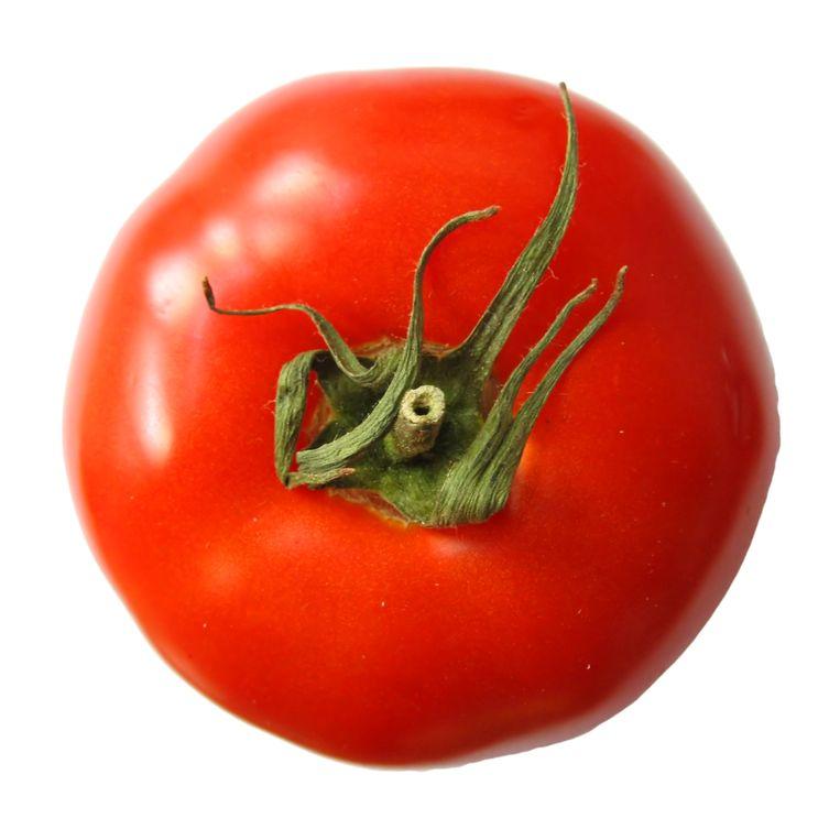 Een frisse tomaat die nog niet besmet is met de mysterieuze ziekte.  Beeld