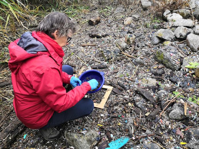 Een vrijwilliger inventariseert de aanwezigheid van plastic korrels in de Scheldebocht, november 2019.