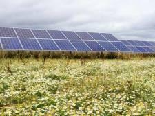 Plan voor zonnepark in Dieren-West