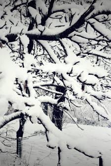 Een mooie foto van de sneeuw gemaakt? Deel hem met ons!