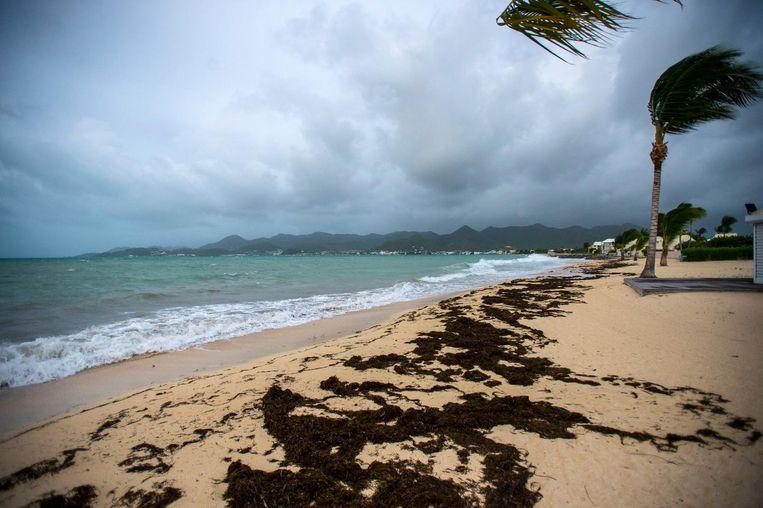 Orkaan Irma slaat toe. Beeld AFP