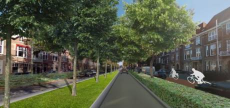 Oranjeboulevard Den Bosch: 1000 vierkante meter meer groen, 1600 vierkante meter minder asfalt