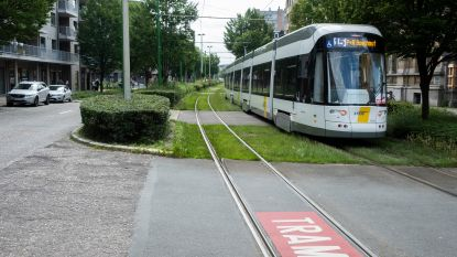 Zo kan het ook: struiken langs trambedding Grotesteenweg keurig gesnoeid