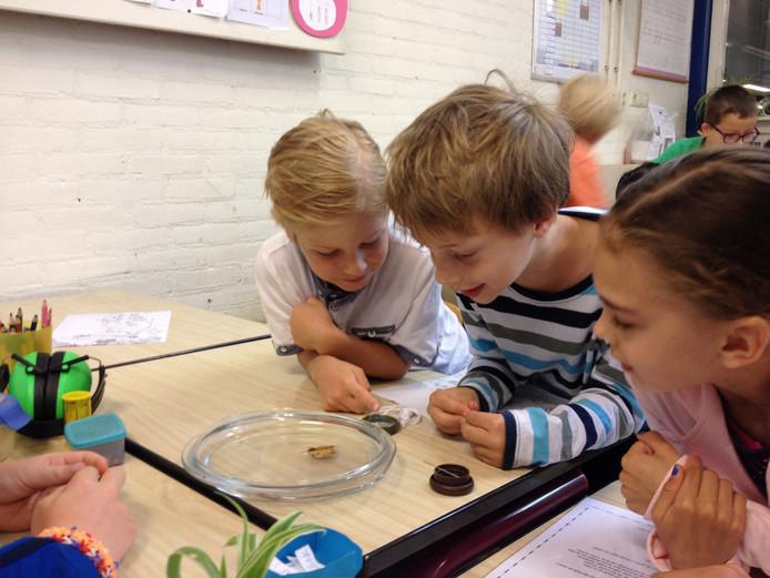 Kinderen kunnen bijvoorbeeld proefjes doen bij Wetenschap en Techniek.