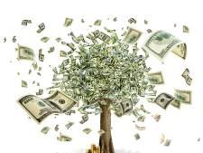 'Twee derde van mijn opdrachten doe ik puur omdat ik geld moet verdienen'