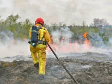 Brand in natuurgebied De Malpie in Valkenswaard onder controle