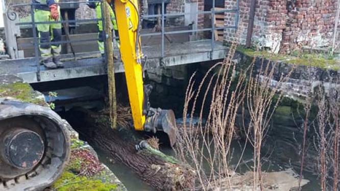 Weggespoelde bomen versperren Molenbeek en doorgang aan sluis Van Hauwermeirsmolen