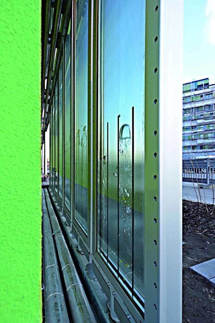 Een paneel gevuld met water, algen en koolstofdioxide, van de zijkant bekeken. foto Colt International