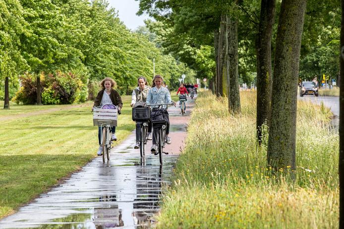 Fietsers rijden over het fietspad aan de noordzijde op  Burgemeester Schneiderlaan in Roosendaal Archieffoto Christian Traets