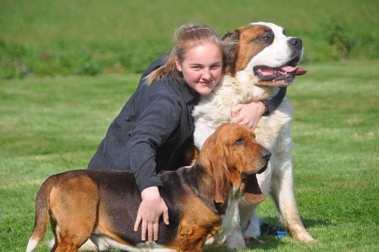 Basset hound Jef werd gestolen uit de tuin van Isabelle Bouckenooghe. Op de foto zien we dochter Geraldine (14) met Jef (vooraan) en de sint-bernardshond van het gezin.