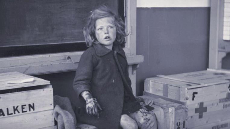 Boekomslag van het NIOD-onderzoek met Rode Kruispost in het Groningse Ten Boer, mei 1945 Beeld null