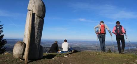 Duitse 'meiboom' verdwijnt spoorloos van bergtop