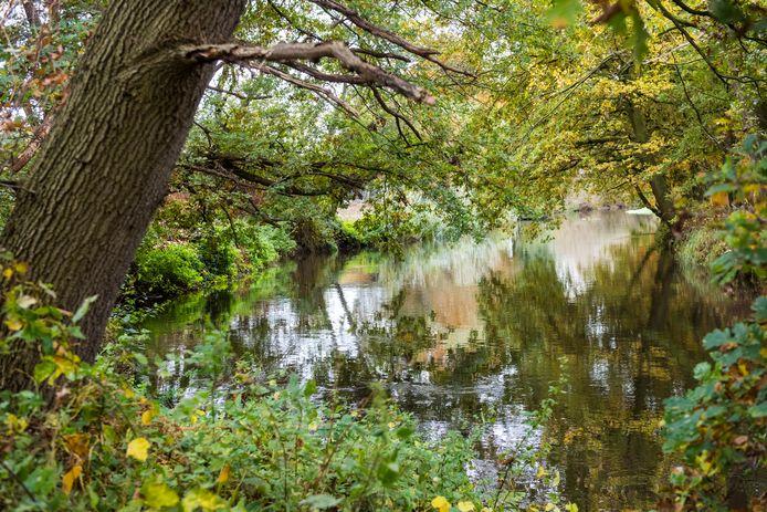 Het Dommeldal bij Sint-Oedenrode is één van de plekken die in het onderzoek onder de loep zijn genomen. Ook hier komt kwelwater voor.