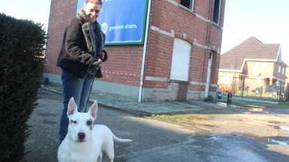 Eerste verdieping van woning vat vuur in Zonhoven: hond 'Spooky' en baasje op tijd gered