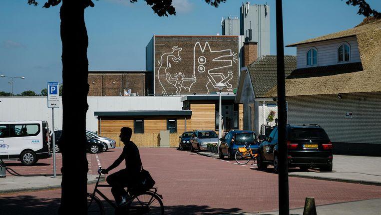 De muurschildering is vanaf de Willem de Zwijgerlaan gedeeltelijk te zien. Beeld Marc Driessen
