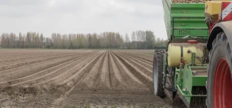 Verplichte drempels tussen aardappelruggen zijn zinloos in Zeeland, vinden boeren: 'Dit is Limburg niet'