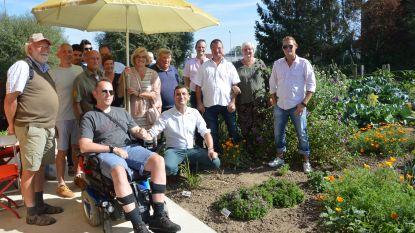 Volkstuinsite 'Graafland' officieel geopend: na meer dan twintig jaar eindelijk volkstuinen in Ninove