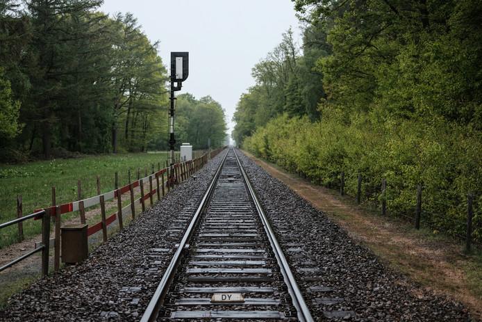Het is een koude regenachtige dag, donderdag 12 maart 1992. In een bos bij Wehl stapt 's avonds laat een man voor de trein. Wie is hij? Iemand moet hem missen. Ook na 27 jaar. De zaak houdt politiemensen nog steeds bezig. En er zijn meer onbekende doden.