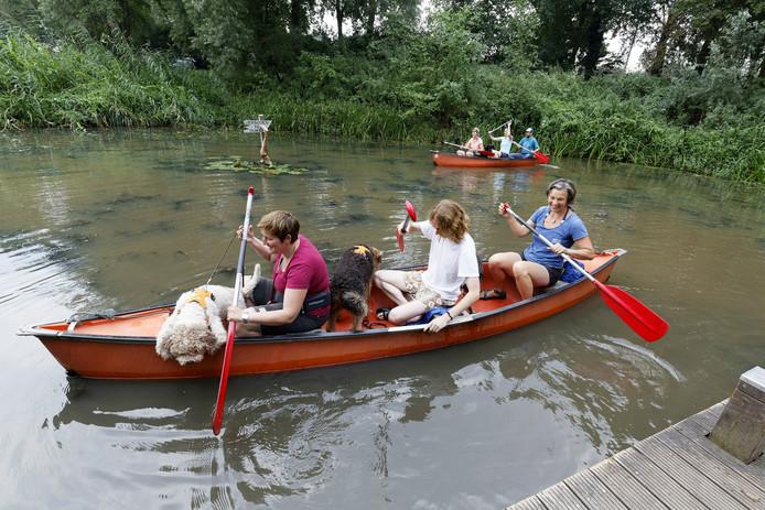 Het was nog ietwat onwennig voor de honden aan het begin van de kanotocht.