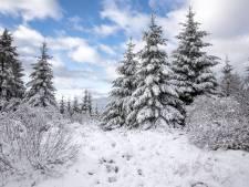 L'Eifel belge, l'alternative aux Hautes Fagnes pour un week-end enneigé