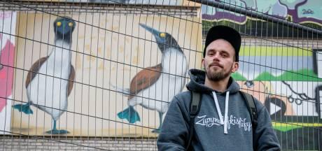 De vrolijke pinguïns van kunstenaar Peter Baca sieren 'graffiti-hoofdstad' Hengelo