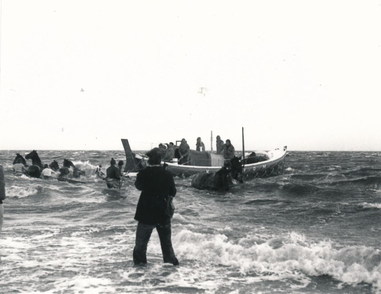 De reddingsboot met acht paarden rukt in 1979 uit voor een Duits schip in nood. De paarden zullen het niet overleven.