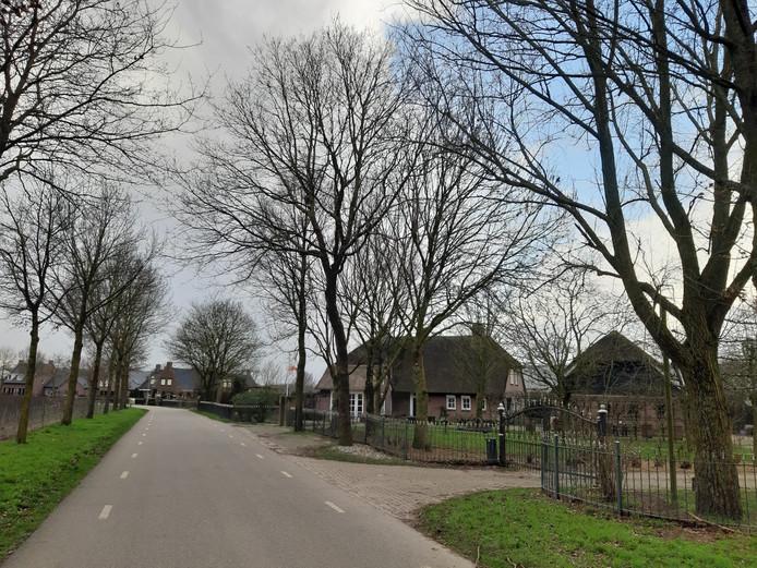 De situatie aan het Hazenpad in Leur. Rechts gezinshuis TOF, met geheel rechts de schuur die zou worden verbouwd en daarnaast de bestaande woning. Geheel links, tussen de bomen, het huis van buurman Van der Mark.