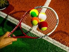 Volgend jaar nieuw park voor tennisclub