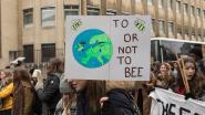 Groen vraagt schepen van Klimaat