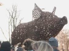 Gigantisch varken bij Hofvijver voor initiatief Stop de Kooien
