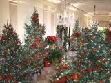 Zo ziet het Witte Huis eruit met kerst