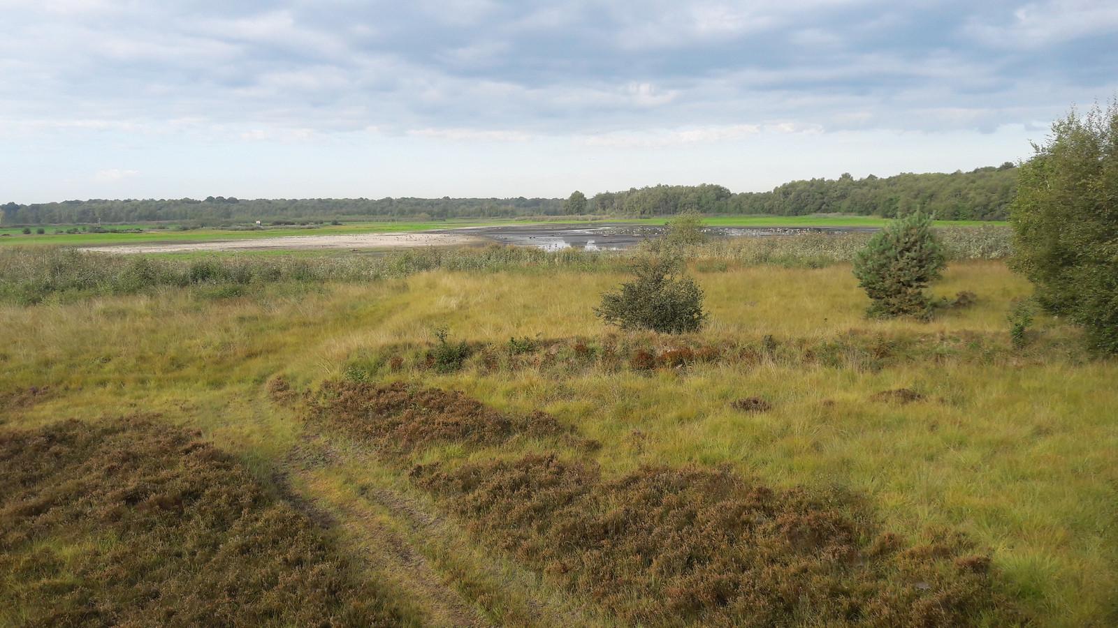 Alleen aan de oostzijde van het Zwillbrock is een klein plasje water te vinden.