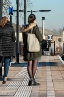Kritiek op plan opheffen boemeltrein tussen Elst en Geldermalsen