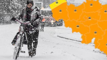 Tot 10 centimeter sneeuw: KMI trekt waarschuwingsniveau op naar 'code oranje', ontdek hier hoeveel bij jou voorspeld is