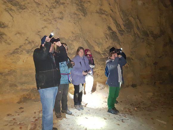 Vrijwilligers van de Werkgroep Vleermuizen van Natuurpunt tellen vleermuizen in de mergelgroeven van Riemst.