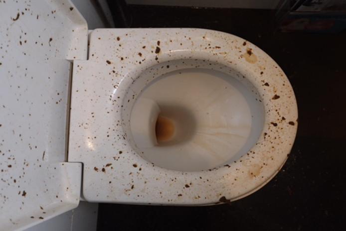 Water Trekt Weg Uit Wc.Poep Spuit Uit Toilet In Eindhoven Terwijl Vrouw Erop Zit