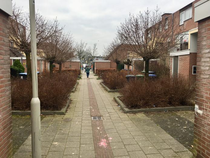 7f3ec324031 Slachtoffer herkent overvaller in Arnhem: 'Ik ben zwanger ...