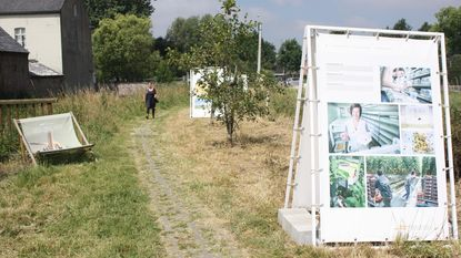 Expo 'to bee or not to bee' langs Zwalmbeek geopend