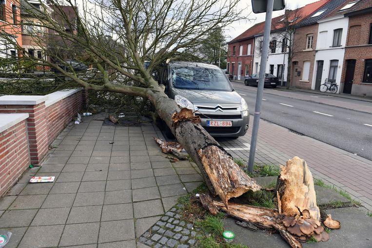 Op de Diestsesteenweg in Kessel-Lo raakte een wagen beschadigd.