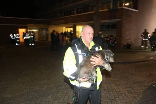 Ook huisdieren werden geëvacueerd.