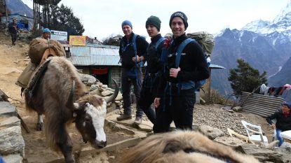 Dag 6 van expeditie Belgian Tornados: Jacques Borlée & co moeten het zonder zieke gids doen