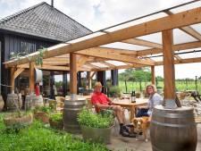 Ook wijnboer Youp moet gebouw afbreken in Rheden: 'Adieu 10.000 euro'