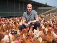 Steeds minder boeren willen biologisch worden: 'De consument is niet bereid de meerprijs te betalen'