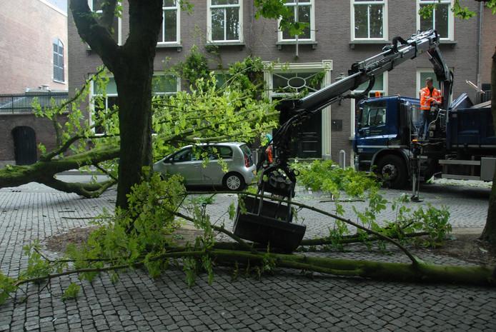 Met een kraantje wordt de boom opgeruimd.