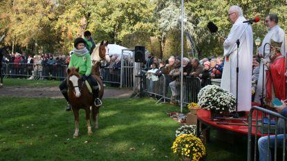 Viervoeters schuiven aan voor Sint-Hubertuswijding
