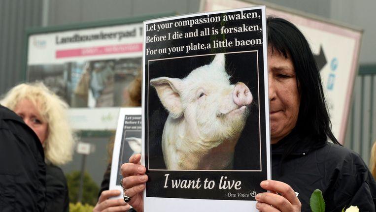 Stil protest van dierenrechtenorganisaties Animal Rights en Gaia bij het slachthuis in Tielt. Beeld photo_news