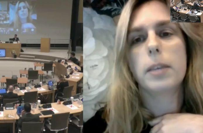 De Nederlandse PvdA-politca Julie d'Hondt deed uitspraken over de kinderboeken van Jip en Janneke tijdens de vergadering van de Utrechtse provincieraad