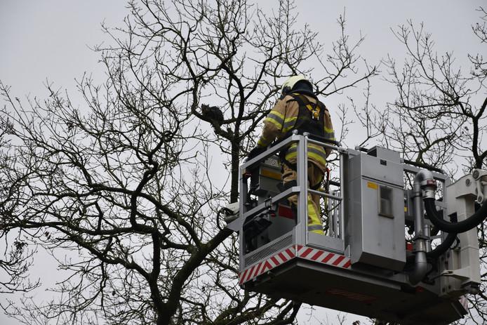 Brandweer probeerde de kitten met een hoogwerker te redden.